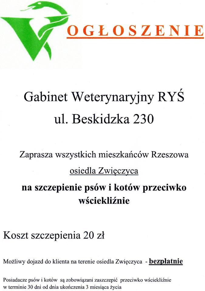 rys_ogloszenie